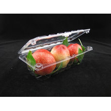 Blister Food Tray Packaging Fruits and Vegetables