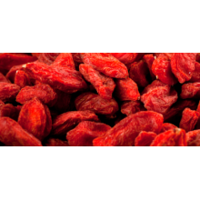 2017 Rendah Pestisida Goji Berry