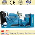 240kw открыть Раоибыл типа генератор электроэнергии