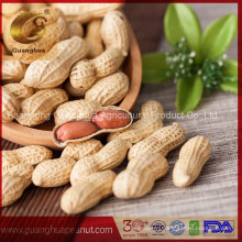 Best Export Quality Roasted Peanut in Shell 9/11