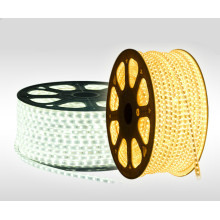 SMD 5730flexible LED Rope Light Used in Holiday Days