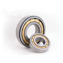 Types de roulements roulements à rouleaux cylindriques NU 1005M