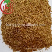 Graines biologiques de baies de goji pour planter un arbre