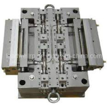 Precious Multi Cavities Injection Mould/Mould Tooling Manufacturer (LW-03656)