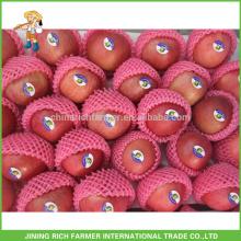 Exportação Chinesa Formas Convencionais Fruit Grade A Maçã Fresca Yantai Fuji Maçã Fruta Com Melhor Preço