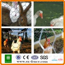 Hexagonal malha de arame de galinha \ mesh de arame hexagonal (ISO9001: 2008 fabricante profissional)