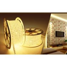 Bande LED 220/110V LED Lumière LED