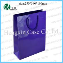 Lovely Beauty Gift Paper Bag (HX-Y013B)