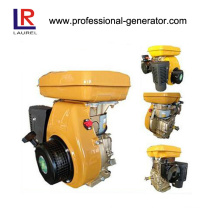 8HP Petrol/Gasoline Engines for Motor