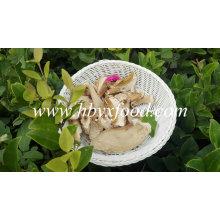 Buy Dried Mushroom Boletus with Good Quality