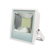 100W Outdoor LED Lighting for Square and Factory (10W 30W 50W 100W)