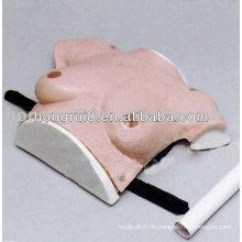 HR / F7C Vivid Breast Examination Model, Weibliche Lehre Brust Modell