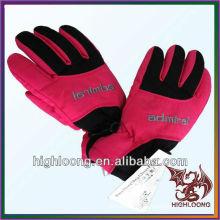 Großhandel Durable Prevent Frostbite Winter Thinsulate Inside Ski Handschuhe