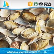 hot sale natural flavor frozen short necked clam with shell