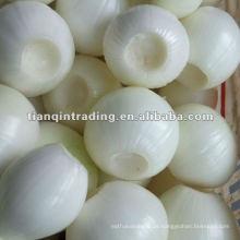 geschälte weiße Zwiebel