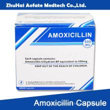 Amoxicilina Cápsula Envase Embalaje
