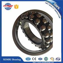 Timken SKF NSK Self-Aligning Ball Bearings (2206)