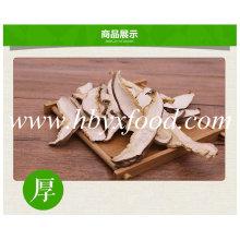 Tranche de champignons bio Shiitake sain de Hubei