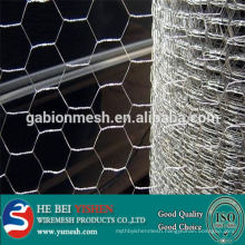 Hot sale galvanized/PVC coated chicken hexagonal wire mesh factory