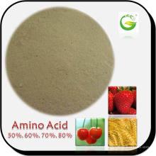 80% Polvo Aminoácido