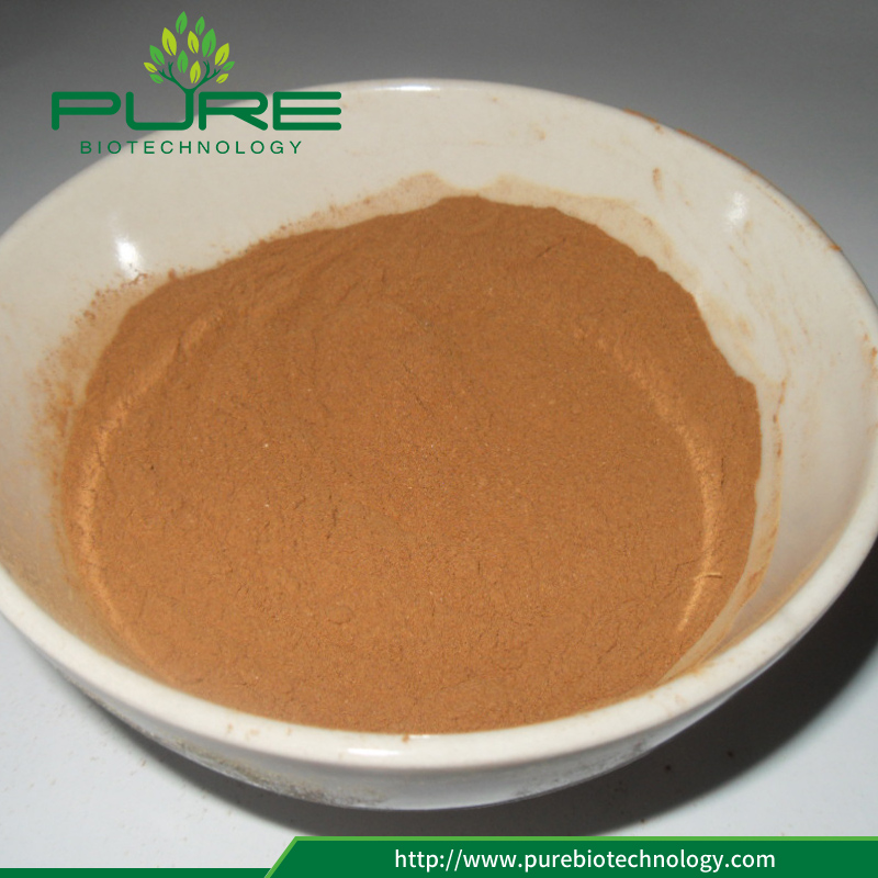 Rhodiola Rosea plant Extract Powder