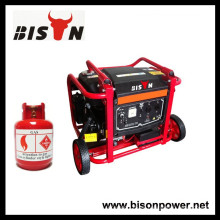 BISON (CHINA) Gas Gasolina Dos-en-uno Generador OEM Gas