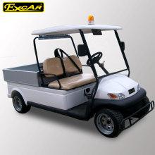 Luz de alarma Carrito de golf de 2 plazas con carga pequeña