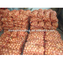 New Crop 2012 Red Shallot