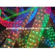 Ruban lumineux LED 5 fils Corde lumineuse LED (forme plate)