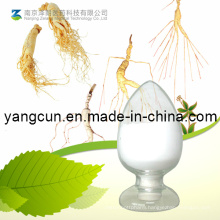 Natural Ginseng Root / Leaf Extract Ginsenosides