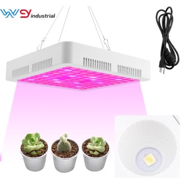 led grow hans panel 300W plantas de interior