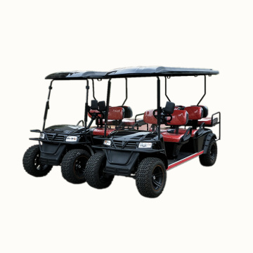 6-Sitzer 4X4 Gas Electric Golf Cart