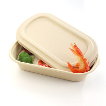 Best selling biodegradable reusable bamboo plates lunch box