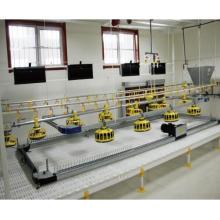 un plancher de poulet automatique complet ou un équipement d'alimentation au sol avec alimentation automatique complète