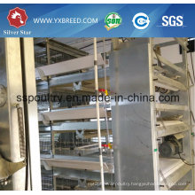 H Type Automatic Broiler Chicken Cage