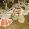 Aves de capoeira alta qualidade comedouros e bebedouros para pato