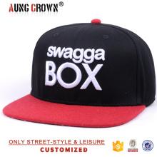 embroidery logo design snapback cap/custom 6 panels snapback cap and hat/custom 6 panel caps