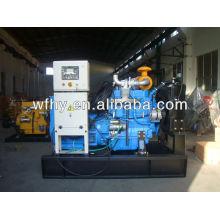 Générateur de fréquence diesel 40KW
