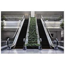 Sicher Aufzug Gre20 Slim Rolltreppe