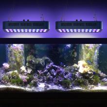 Отличная лампа для аквариума со светодиодной подсветкой