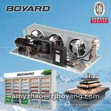 unité de condenseur de chambre froide avec unités de condensation de compresseur de réfrigération R404a
