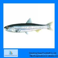 Fruits de mer à l'anchois congelés