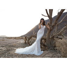 China Sexy Fishtail fashion Bridal Wedding Dress (BH013)