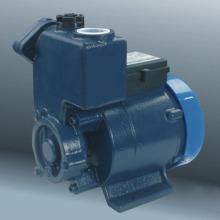Clean Water Pump (DGP)