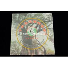 2010 Fábrica de Xiaguan Árbol silvestre sin procesar Yunnan Qizi Bing Cha