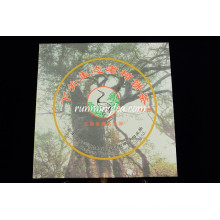2010 Xiaguan Factory Wild Tree Raw Yunnan Qizi Bing Cha