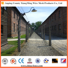 Hot Sale Galvanized Barbed Wire Fence