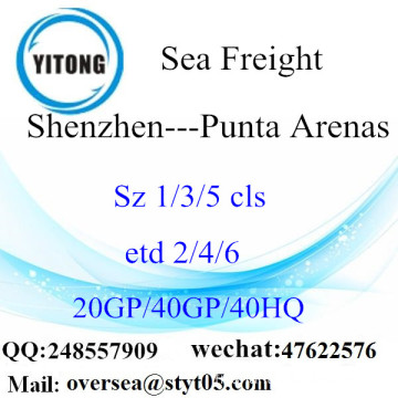 Shenzhen Port Sea Freight Shipping To Punta Arenas