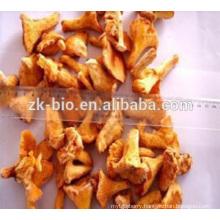 Health supplement Organic Chanterelle Mushroom Extract Polysaccharides
