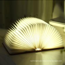LED Color Light Flexible Light Outdoor Light